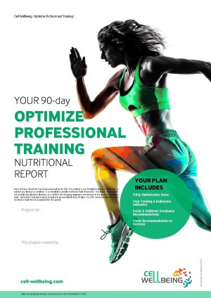 90-day-optimize-professional-report-cover